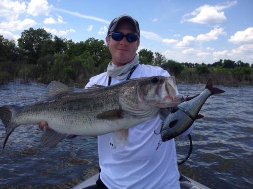Big bass time on lake fork 5 7 15 lake fork guide for Big 5 fishing